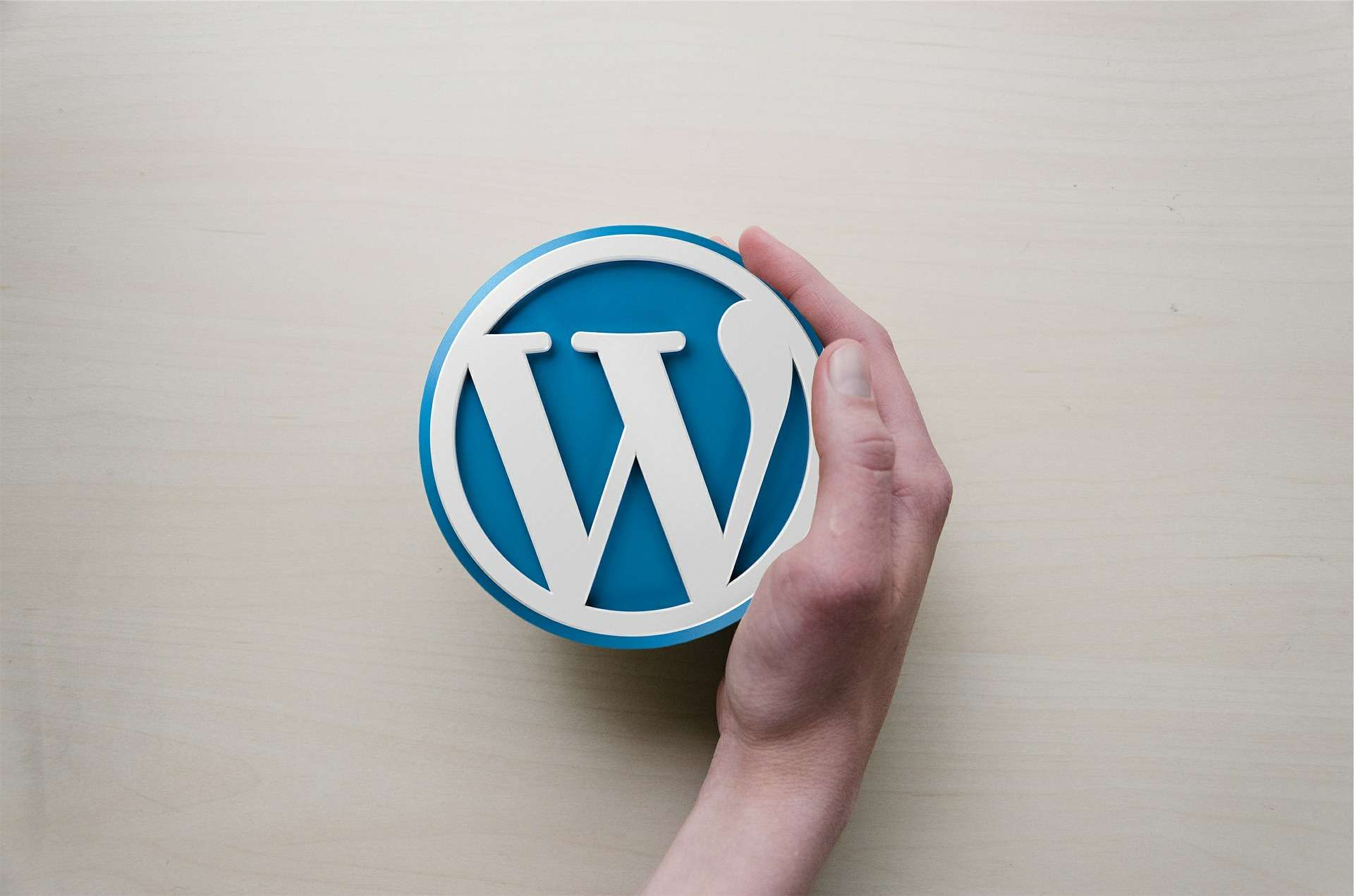 how to protect a wordpress website -  make the process of logging in more difficult